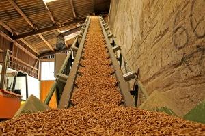 Biomass Pellets (Source: Deutsches Pelletinstitut, viewed at www.millicentmedia.com/)